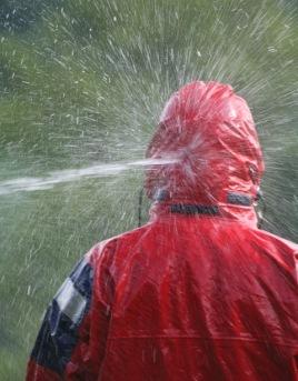 wet-one