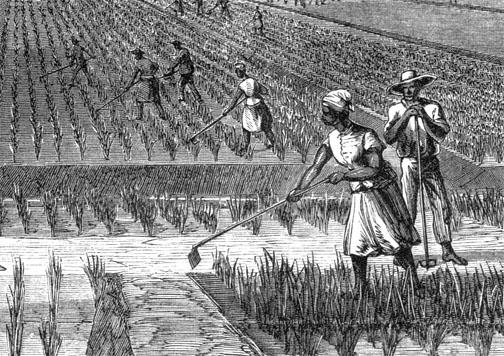 Plantation Economy Then...